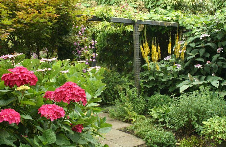 Tegeltuin is uit, de groene tuin springlevend. De tegeltuin is uit omdat er veel nadelen zijn als de tuin geheel bestraat is. Het lijkt zo gemakkelijk maar is dat zeker niet. In dit artikel ontdek je de voor- en nadelen.Ons leven is tegenwoordig drukker dan ooit, werken, sporten, kinderen en
