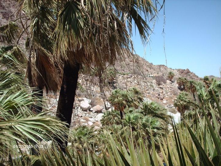 Cañon de Guadalupe B.C Mexico