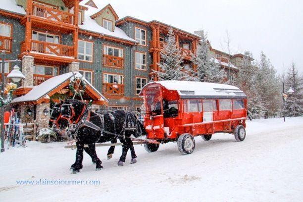 Blue Mountain Resort, Blue Mountains, Ontario — by Ai Long. Winter horse at work. #Snow #Canada #Winter #BlueMountain #Collingwood #Ontario #WinterWonderland More photos here:...