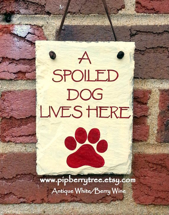 Custom Hand Painted Decorative Slate Spoiled Dog by Pipberrytree, $18.00