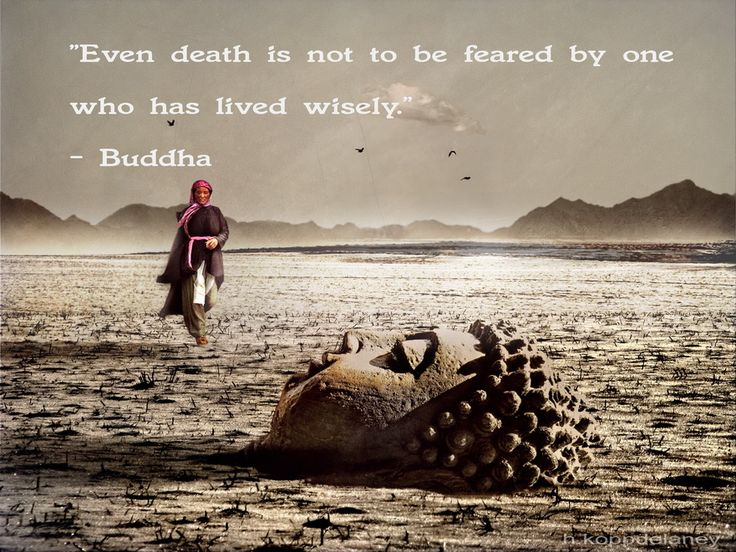 Hasta la muerte es algo que no debe temerse po quien a vivido sabiamente. ~Buddha (Even death is not to be feared by one who has lived wisely. ~Buddha) ..*
