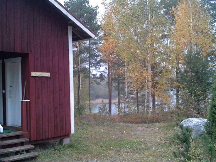 Naurulokki 4  www.tapanijohansson.fi