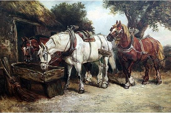 Horses at a water trough