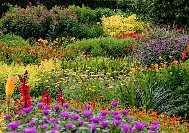 Rosemoor Gardens by ARF., via Flickr