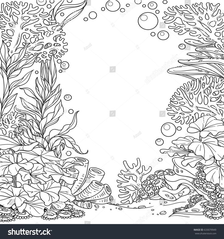 Underwater World With Corals  Seaweed And Anemones Outlined Isolated On A White Background In