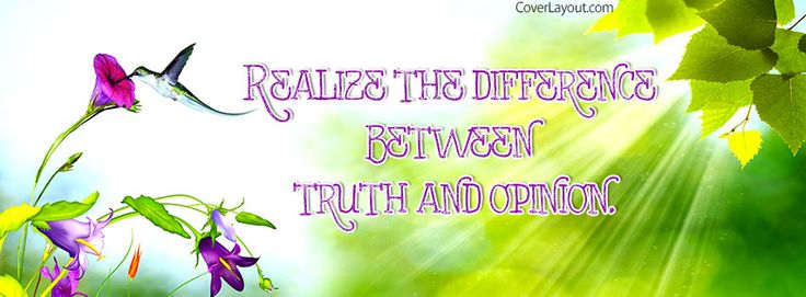 a paper on difference between opinion and truth Fact and truth – regarding the difference between them term papers available at planet paperscom, the largest free term paper community.