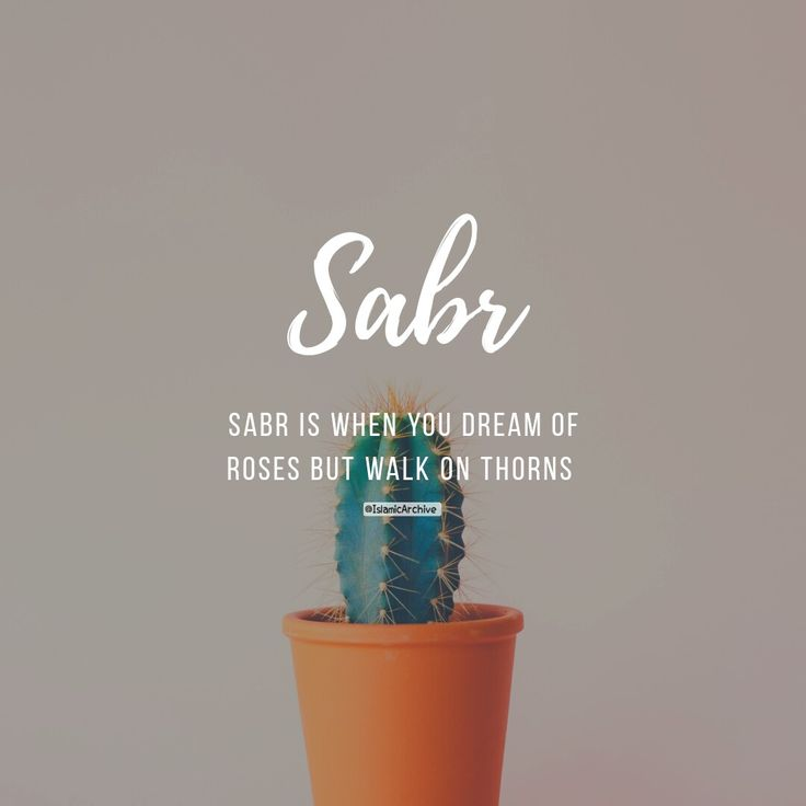 Sabr is when you dream of roses but walk on thorns!