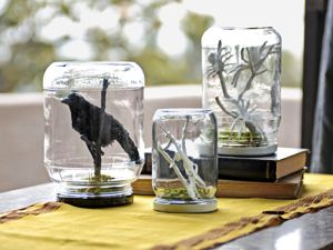 Sppoky terrarium - this is a simple idea but worth trying some gruesome artifacts add to the scene - the jar lids need to be disguised with moss or fabric though