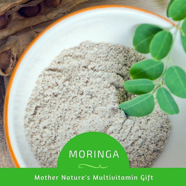 The leaves of Moringa Oleifera are nature's multi-vitamin providing 7 x the vitamin C of oranges, 4 x the calcium of milk, 4 x the vitamin A of carrots, 3 x the potassium of bananas, and 2 x the protein of yogurt. On top of that, Moringa has no known impurities, with no adverse reactions ever recorded.  #USimplySeason #spices #Moringa  Source:Pure Healing Foods