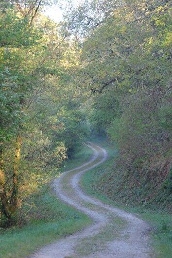 Deerpark Cornwall #ForestRetreat #UKgetaway