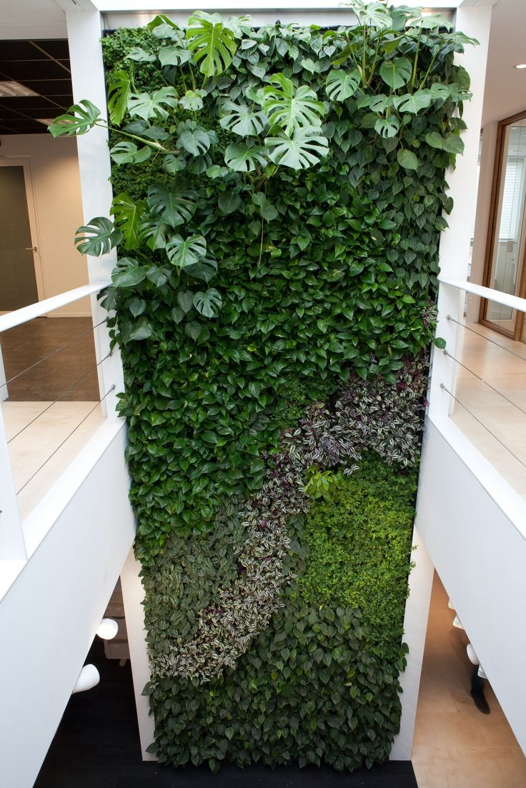 Livewall green wall system make conferences more comfortable - Int6 Jpg 854 1 280 Pixels