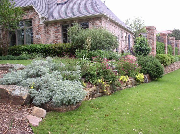 A border with a mix of different plants and flowers new for Different landscaping ideas
