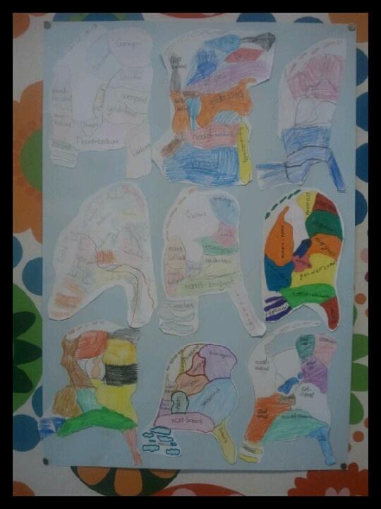 Geef de kinderen de opdracht om Nederland te tekenen. Zonder enig voorbeeld gewoon uit hun hoofd. Daarna hang je alle vormen samen op en heb je the wall of the netherlands. Ze kijken dan nog heel vaak erop om te kijken of het goed in vorm zit.