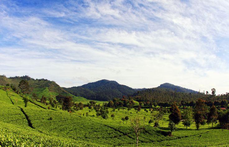 South Bandung