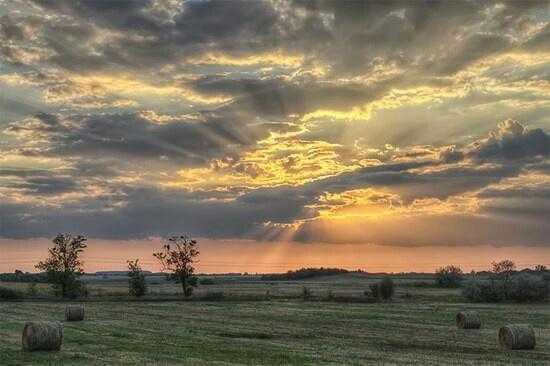Hungarian Great Plains sunset