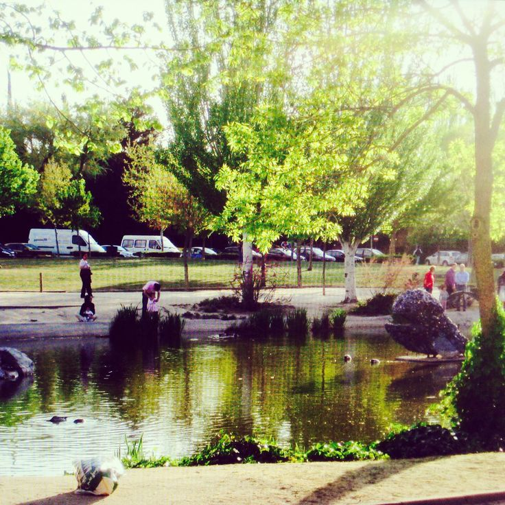 2008 park