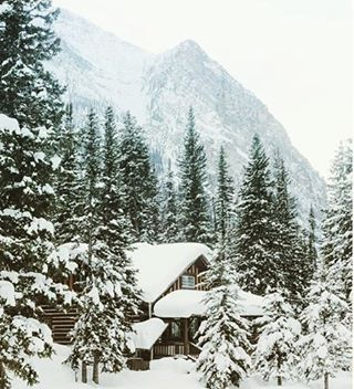 """Spruce Collection ~ """"The first fall of snow is not only an event, it is a magical event. You go to bed in one kind of a world and wake up in another quite different, and if this is not enchantment then where is it to be found?"""" ~J. B. Priestley"""