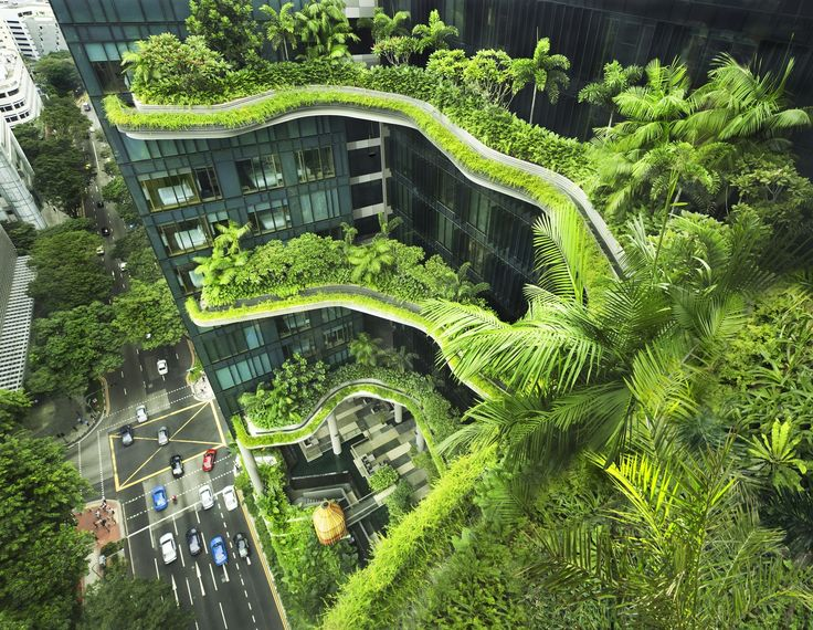 "Interview with WOHA: ""The Only Way to Preserve Nature is to Integrate it into Our Built Environment"""