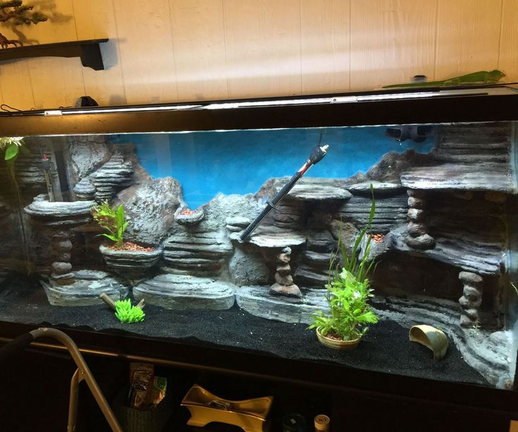 I made this background for my 120 gallon aquarium. It was actually pretty easy to make but it was very time consuming and messy. I'd definitely do it again though! It was a lot cheaper than buying a custom made background and you can make it exactly how you want it. This instructable will walk you through how to make one of these backgrounds. You can adapt this to any size tank. The materials I used are fish safe. ***Note: This is only for FRESHWATER aquarium use!!!