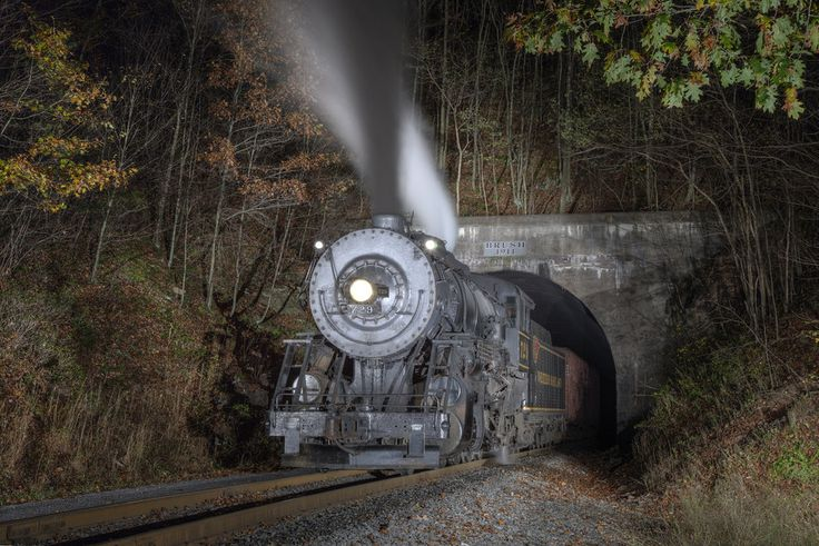 Photo Brush Tunnel by Jason Lowe