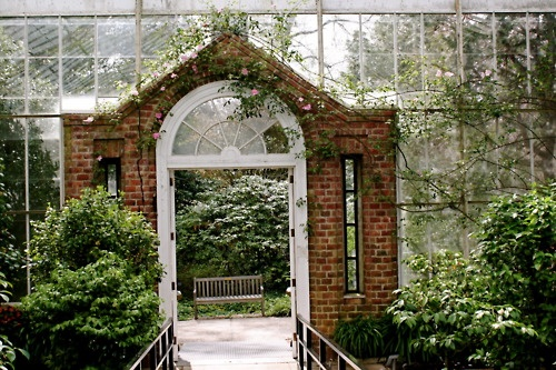 34 best Garden images on Pinterest Gardening, Backyard patio and