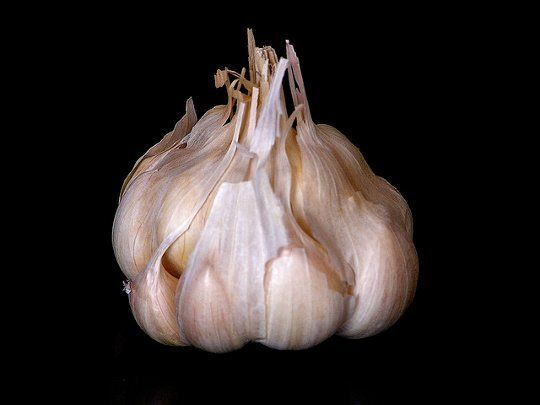 I am going to try this right now.  If it works, this is SHEER GENIUS.  Smart Tip: Peel an Entire Head of Garlic in 10 Seconds — Saveur