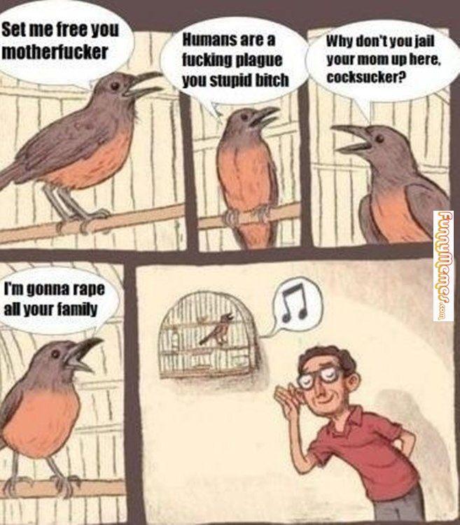 Funny memes Some good rap lyrics...