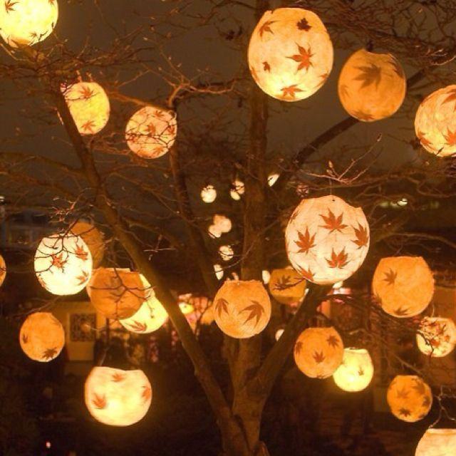 17 best images about outdoor lanterns on pinterest dance - Make hanging lanterns ...