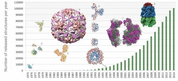 Protein Data Bank Archives its 100,000th Molecule Structure