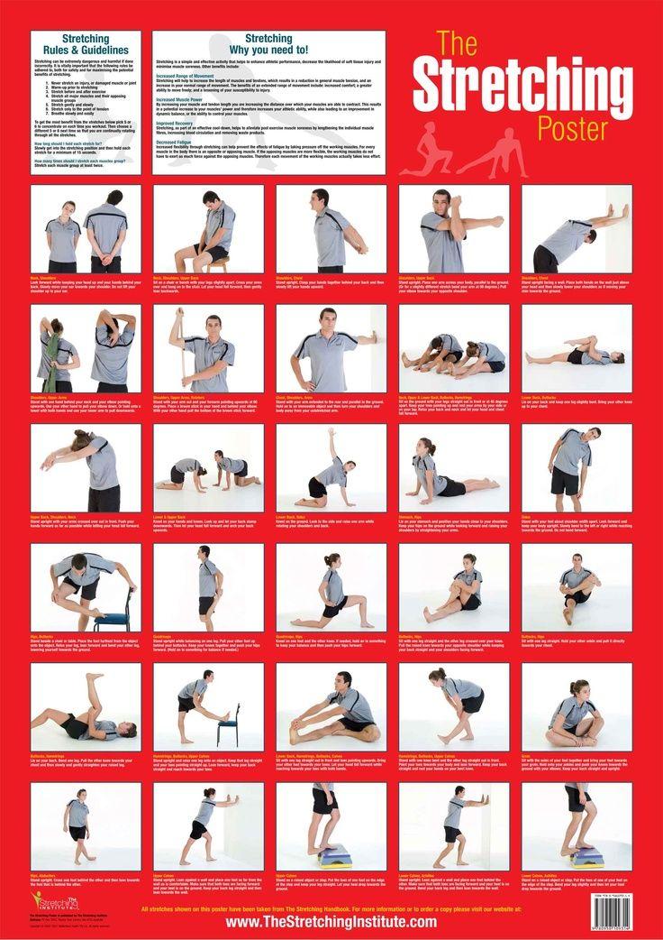 2dfd475e5e3e27b127f5743d6f6be4d1.jpg (736×1042) Exercise