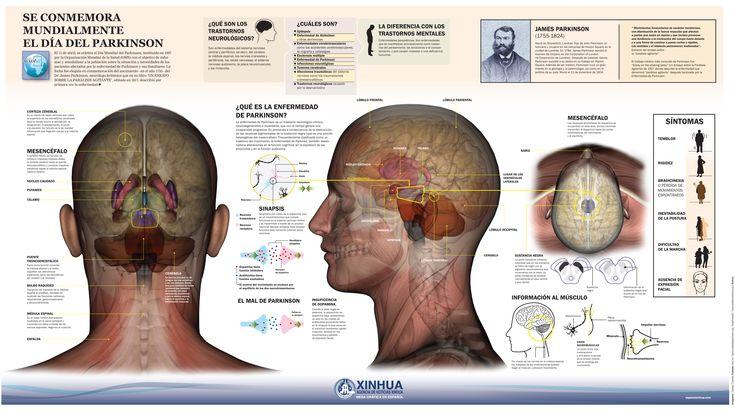 El 11 de Abril es el Día Mundial del Parkinson insituido por la OMS con el objetivo de sensibilizar y e informar a la población sobre esta enfermedad.