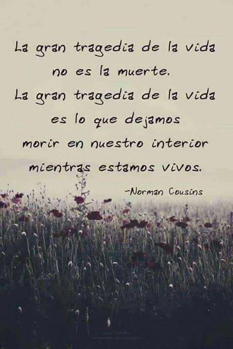 """""""La gran tragedia de la vida..."""""""