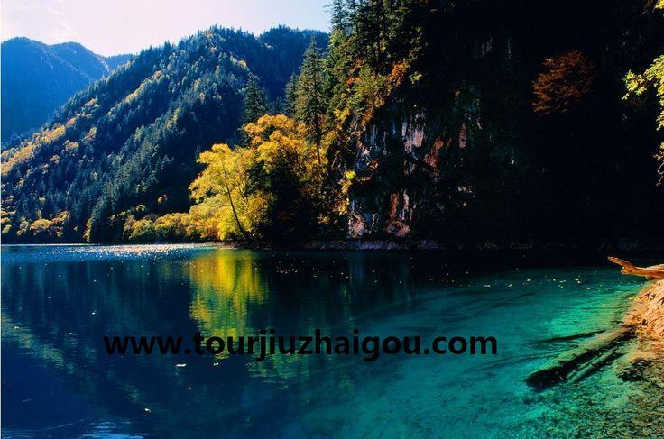 Panda Lake in Jiuzhaigou