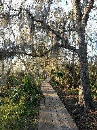 We love adventures and the Jean Lafitte National Historical Park and Preserve in #Louisiana looks tailor made for that.