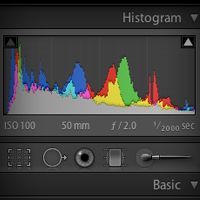 Mastering the Histogram in Adobe Photoshop Lightroom - Tuts+ Photo & Video Tutorial Yes.