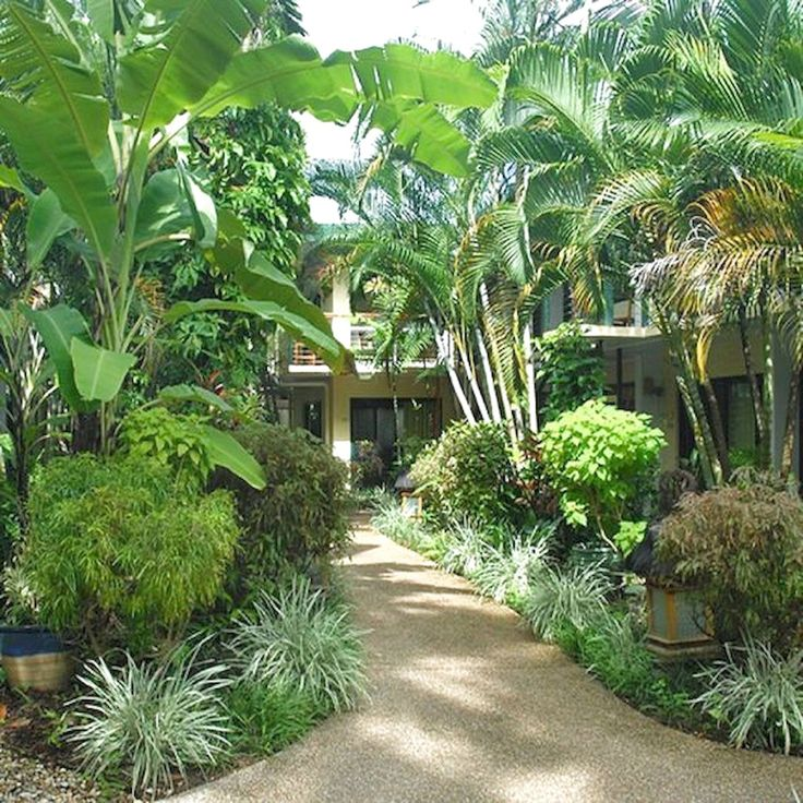 39 Best Tropical Garden Ideas