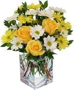 Get Well and Hospital flowers Send Get Well Flowers to Canada