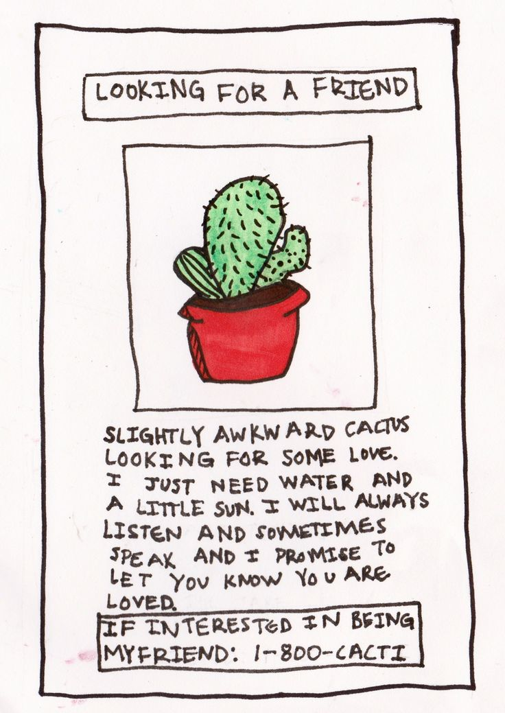 cactus friends  lol wut
