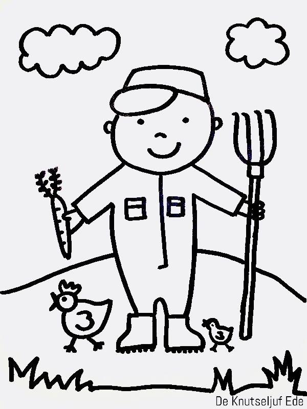 De Boer Boerin Schaap Varken Koe En Kip Op De Boerderij