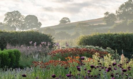 Piet Oudolf's planting follows the beautiful but low-maintenance philosophy of many of his other gardens. Photograph: Heather Edwards