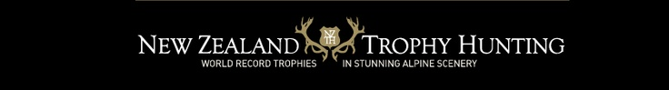 NZ Trophy Hunting, deer, chamois, pig hunting in New Zealand back country