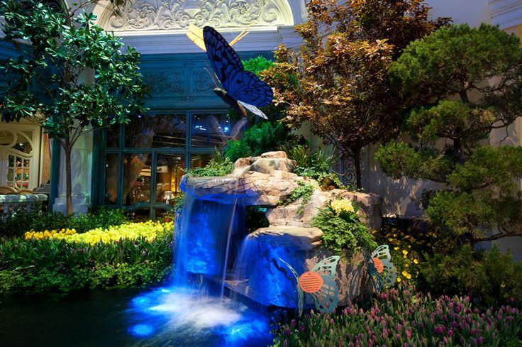159 Best Bellagio Botanical Gardens Images On Pinterest