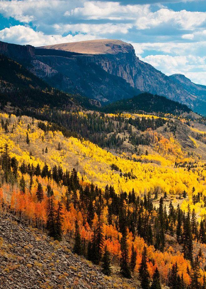 Rio Grande National Forest near Creede, Colorado