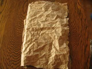 homemade lewis and clark journal...from a paper bag -Lisa