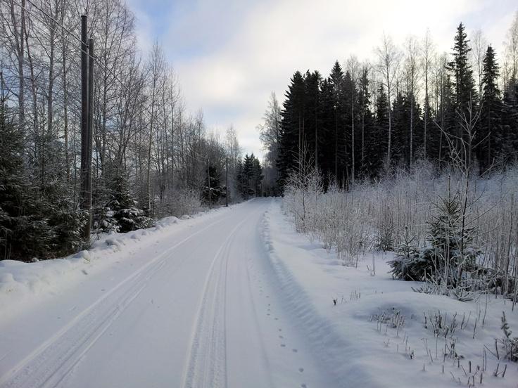 Some winter scenery