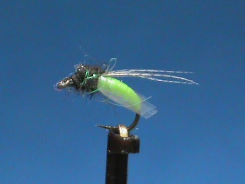 Fly Tying a Latex Caddis Larva with Jim Misiura - YouTube