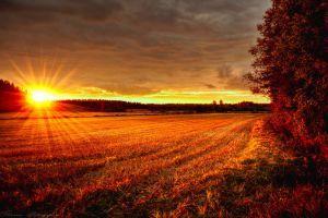 Scandinavian autumn 8 by Floreina-Photography