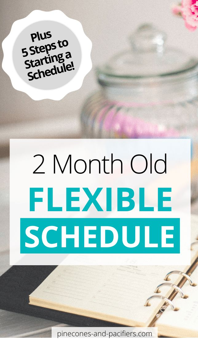 2 Month Old Baby Schedule in 2020   Baby schedule 2 month ...