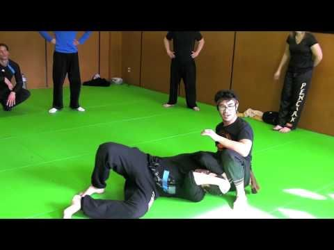 "SILAT OPEN CIRCLE : ""Introduction to Silat Open Circle"" Toulouse, France..."