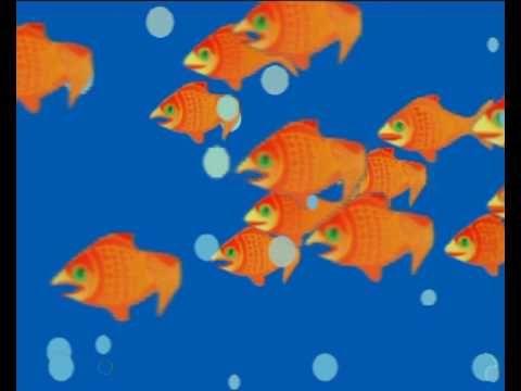 aquari - YouTube